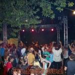 rock-im-garten-2013-0056