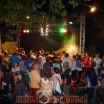 rock-im-garten-2013-0060